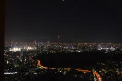 View from Park Hyatt in Shinkuku