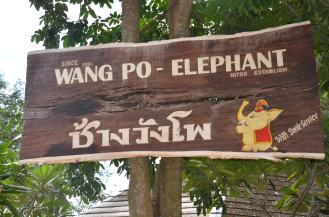 Elephant Camp - Wang Po - Best tour with Tours with Tong